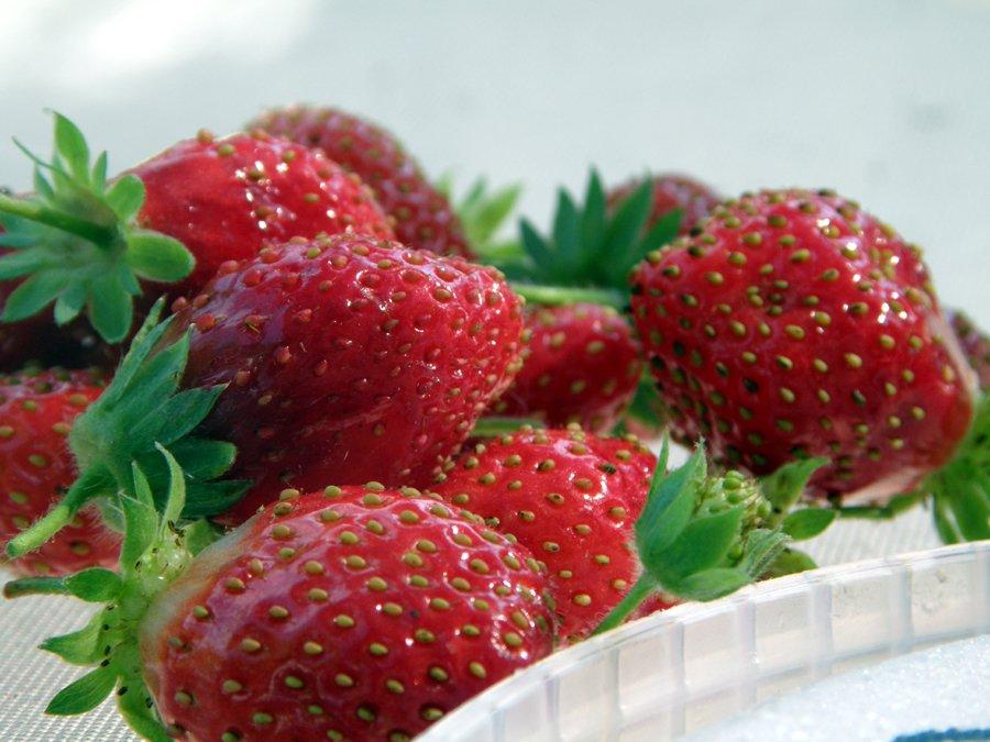 Strawberries and Sunflowers
