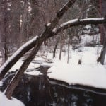 Snow Creek_pr